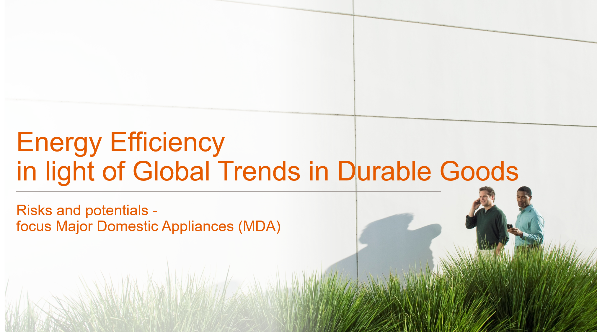 Energy efficiency in light of Global Trends in Durable Goods